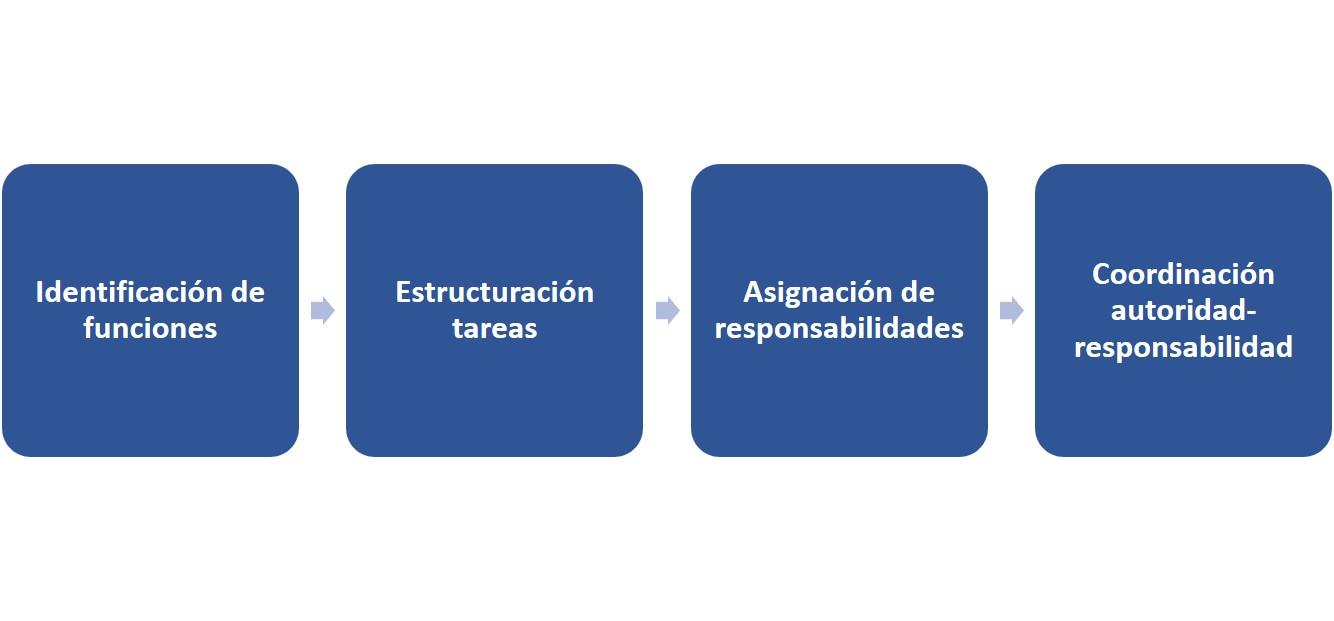 La función organizativa