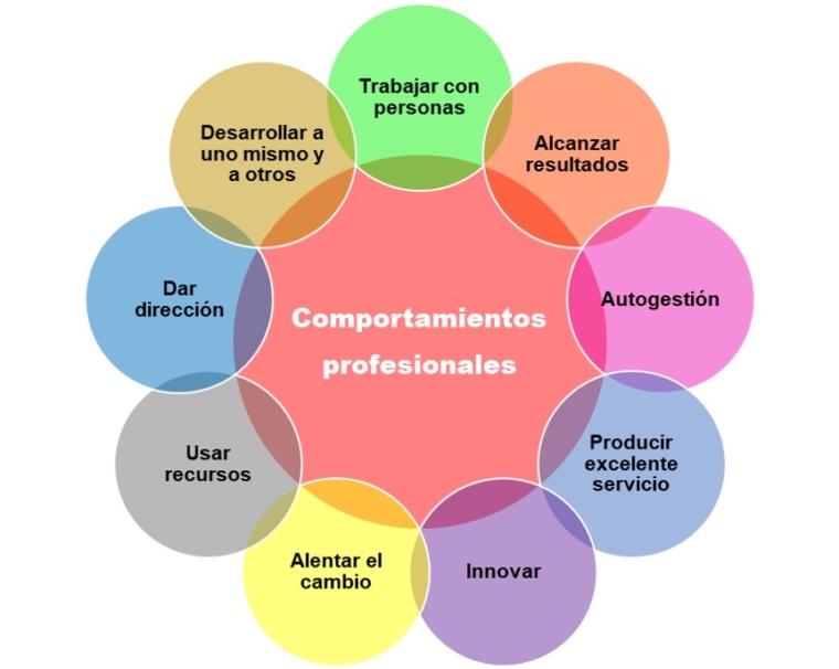 Comprotamientos individuales dentro de una organización